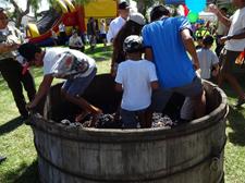 Grape Day Festival